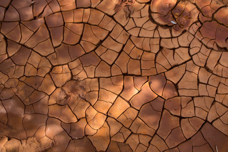 cracks in the dry creek bed